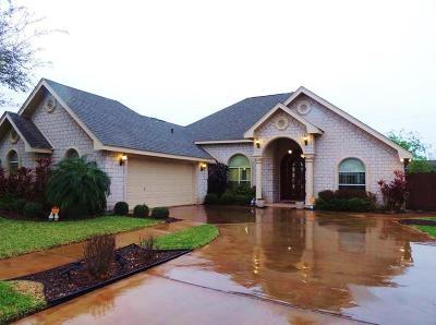 McAllen TX Single Family Home For Sale: $216,900