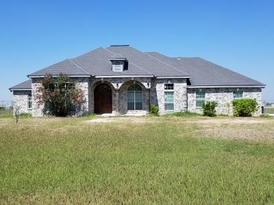 Edinburg Single Family Home For Sale: 7735 E Texas Road