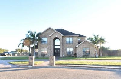 Edinburg Single Family Home For Sale: 5518 Falcon Crest Lane