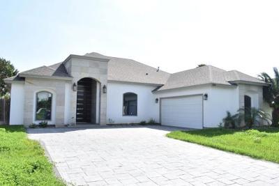 McAllen TX Single Family Home For Sale: $219,000