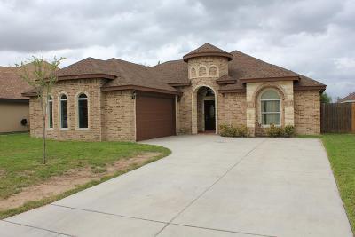 McAllen Single Family Home For Sale: 4912 Walnut Avenue