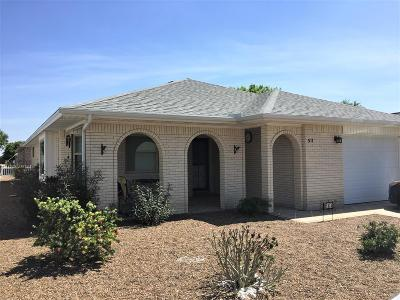 Mission Single Family Home For Sale: 511 Sagittarius Street