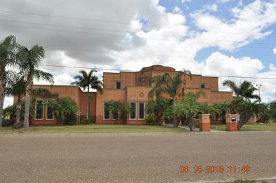 Weslaco Single Family Home For Sale: 3733 S Border Avenue