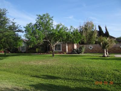 Harlingen Single Family Home For Sale: 14888 S Valencia