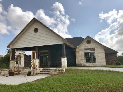 Edinburg Single Family Home For Sale: 21462 El Rucio Road