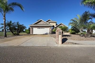 Edinburg Single Family Home For Sale: 3305 Clubhouse Drive