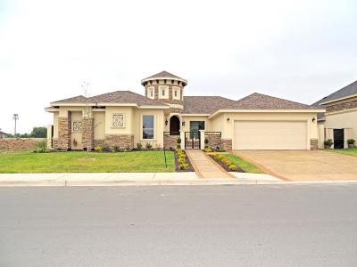 Edinburg Single Family Home For Sale: 2509 Holland Avenue