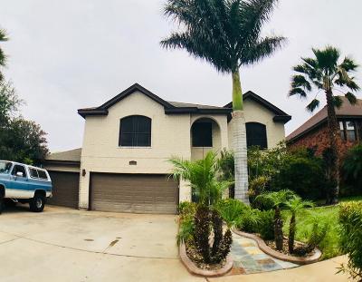 McAllen Single Family Home For Sale: 4120 Violet Avenue
