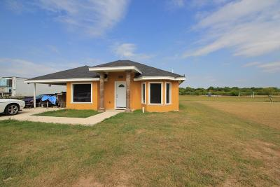 Weslaco Single Family Home For Sale: 3515 Sawgrass Street