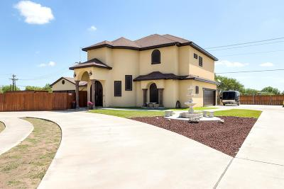 Edinburg Single Family Home For Sale: 1354 Loretta Lynn Drive