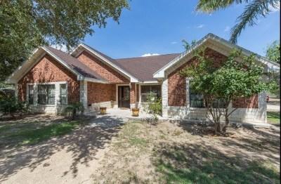 Edinburg Single Family Home For Sale: 14110 US Highway Business 281