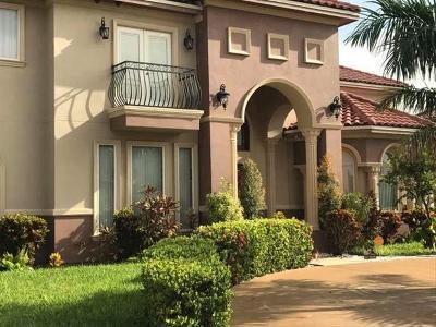 Edinburg Single Family Home For Sale: 2313 Hampton Avenue