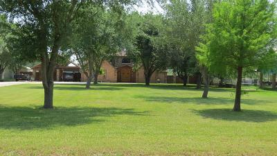 Harlingen Single Family Home For Sale: 16224 Mayfield Road