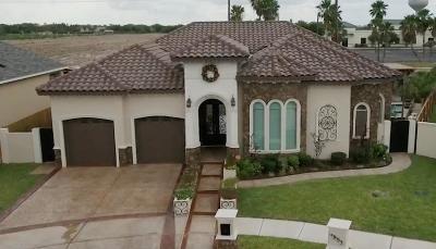 Edinburg Single Family Home For Sale: 4803 Juno Drive
