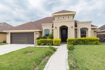 Edinburg Single Family Home For Sale: 907 Vista Hermosa Street