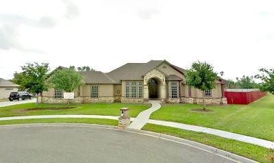 Weslaco Single Family Home For Sale: 1317 Orange Blossom Drive