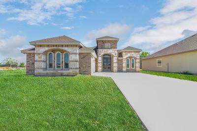 Edinburg Single Family Home For Sale: 5421 San Diego Street