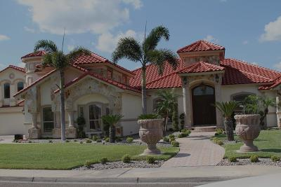 Weslaco Single Family Home For Sale: 922 Natalie Street
