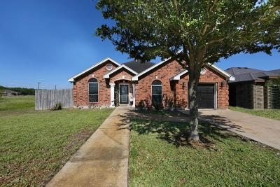 Weslaco Single Family Home For Sale: 3004 Travis Street