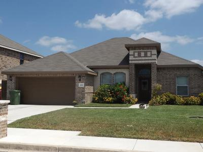 Weslaco Single Family Home For Sale: 2203 Sage Drive