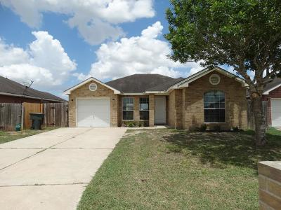 Harlingen Single Family Home For Sale: 617 Chapote Avenue