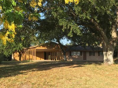Weslaco Single Family Home For Sale: 650 N Lion Lake Drive