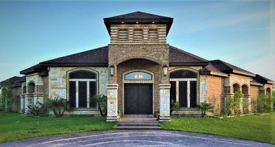 Edinburg Single Family Home For Sale: 1804 Calichera Road