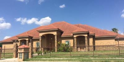 Edinburg Single Family Home For Sale: 5502 Alquds Avenue