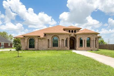 Harlingen Single Family Home For Sale: 28294 S Palm Court Drive