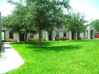 McAllen Multi Family Home For Sale: 812 E Daffodil Avenue #1 - 8