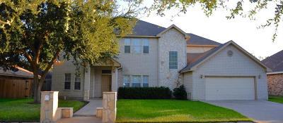 Pharr Single Family Home For Sale: 1310 Cynthia Lane