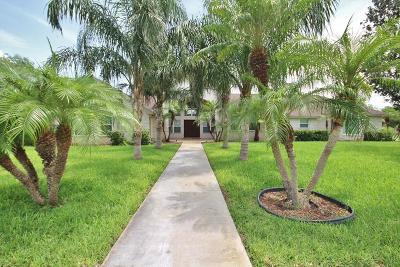 Weslaco Single Family Home For Sale: 1301 Meadow Wood Drive