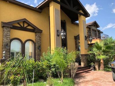 Weslaco Single Family Home For Sale: 1510 El Camino Drive
