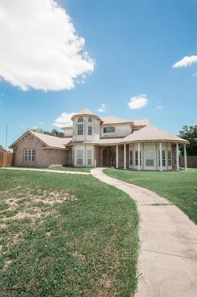 Weslaco Single Family Home For Sale: 1501 Wildwood Drive
