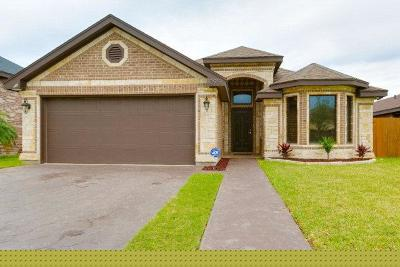 McAllen Single Family Home For Sale: 10919 N 29th Lane