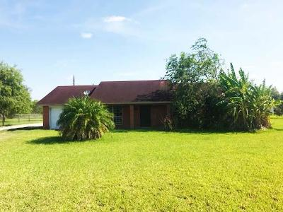 Edinburg Single Family Home For Sale: 6623 E Rogers Road