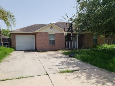 McAllen TX Single Family Home For Sale: $105,000