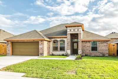 Weslaco Single Family Home For Sale: 2304 W Mimosa Drive