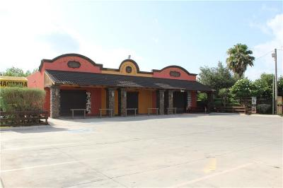 Alamo Commercial For Sale: 1348 N Tower Road