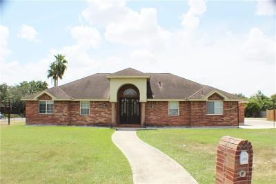 Weslaco Single Family Home For Sale: 2318 Flushing Meadows