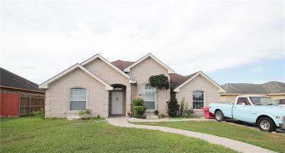 Edinburg Single Family Home For Sale: 1017 Hickory Street