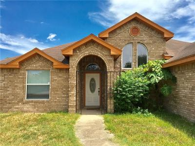 Edinburg Single Family Home For Sale: 3403 Solera Drive