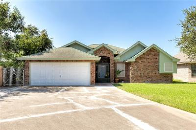 Edinburg Single Family Home For Sale: 1202 Guadalupe Drive