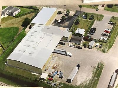 Alamo Commercial For Sale: 1300 W Us Highway Business 83 Street
