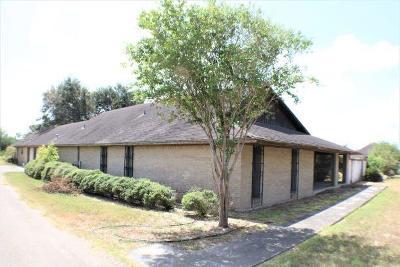 McAllen Single Family Home For Sale: 9700 N 23rd Street