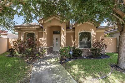 McAllen TX Single Family Home For Sale: $250,000