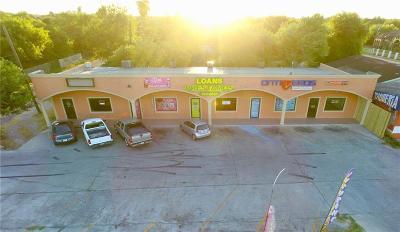 San Juan Commercial For Sale: 2012 N Raul Longoria Road