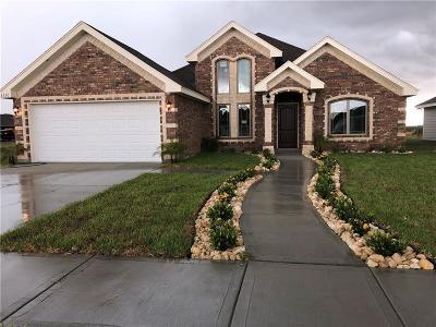 Harlingen Single Family Home For Sale: 8730 Osprey Street