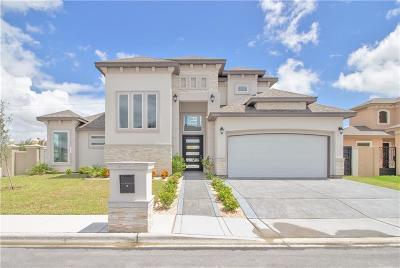 Edinburg Single Family Home For Sale: 2402 Colvin Avenue