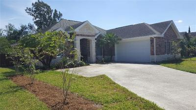 Weslaco Single Family Home For Sale: 904 Chrysolite Drive